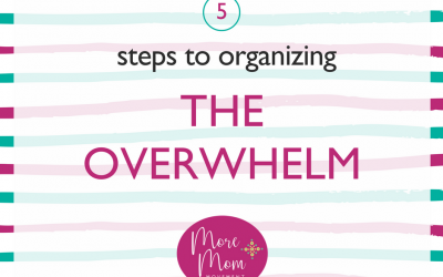 Organizing the Overwhelm